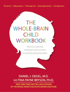 Whole Brain Child Workbook